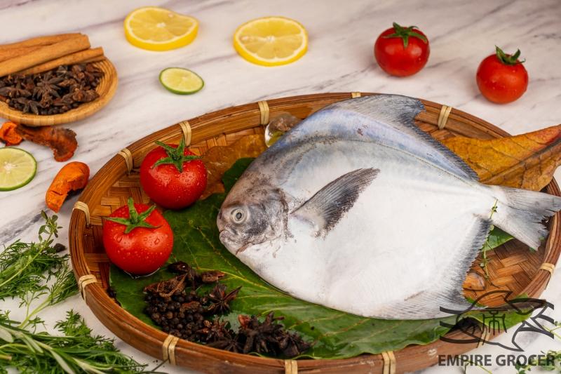Frozen Chinese Pomfret 1Pcs 300g-390g+-