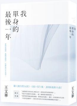 我單身的最後一年 (Mandarin Chinese Book)
