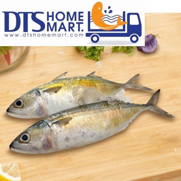 Mackerel Fish/ Ikan Kembung (Cleaned) 1kg