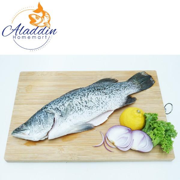 Ikan Siakap (Bersih) 600-800g