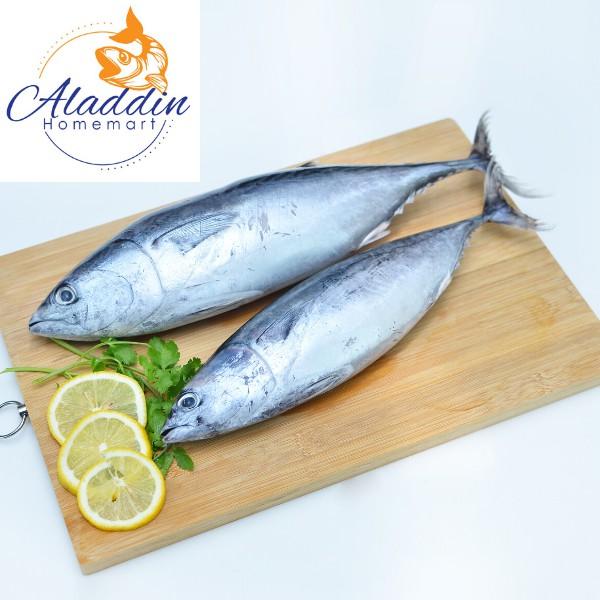Ikan Tongkol Besar (Bersih) 1kg