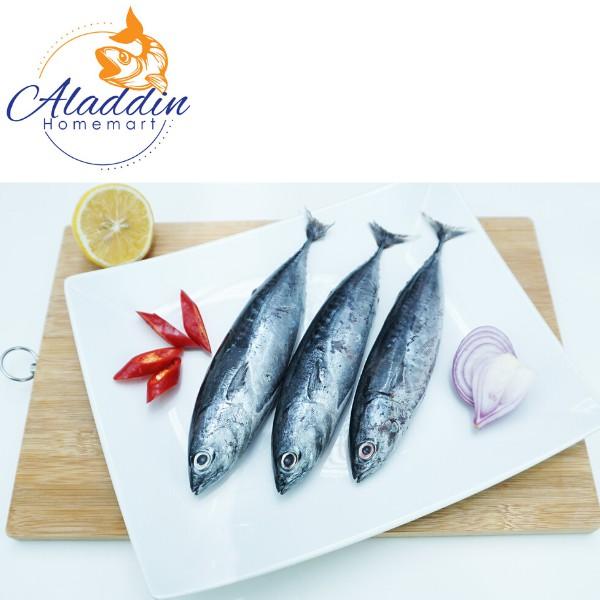 Ikan Tongkol Kecil (Bersih) 1kg