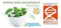 Stevia Liquid Drop (10ml)