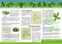 Stevia Powder (300g)