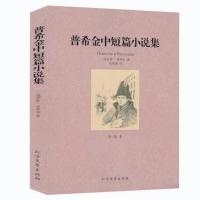 普希金中短篇小说集(全译本)