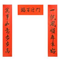 2019手写新春书法对联 - 一帆风顺 M