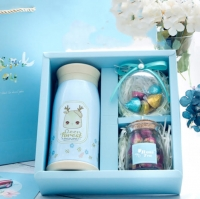 Thermos Blue Set Gift