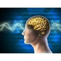 Mind Elevation Intelligence Information Psychology Screening Service (Korean product)