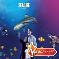 Johor: LEGOLAND SEA Life Ticket