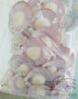 Frozen Pink Shell Scallop 31-40/pack