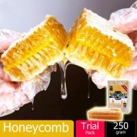 Sarang Madu Lebah / Honeycomb Natural Bee Farm Production Hive honey nest(250g)