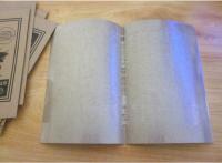 10pcs Best Pelekat Lalat Gam Fly Glue Paper Trap Catcher Strong Adhesive Sticker