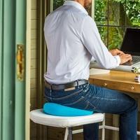 Posture Cushion BackPainHelp