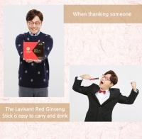 Red Ginseng Stick / LAVIVANT