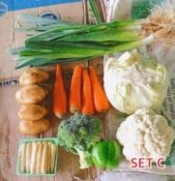 Fresh Vegetable Set C