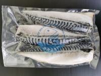 Mackerel Saba Fillet 鲭鱼片