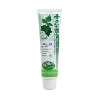 (DENTISTE)Dentiste Natural Herbal Toothpaste 100ml
