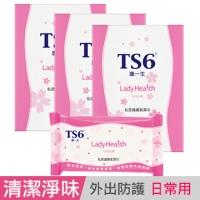 (TS6)TS6 Skin Care Wipes private life X3 box (15 packs)