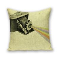 Creative camera pattern cotton and hug pillowcase (snake camera / beam)