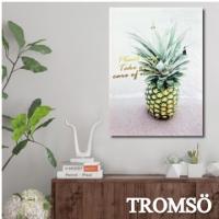 (TROMSO)TROMSO Fashion Frameless Painting - Nordic Pineapple - W272