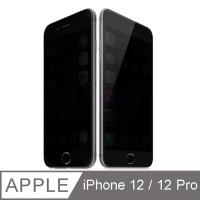 【TOYSELECT】iPhone 12 / 12 Pro 極光學10D防窺/抗指紋/防刮玻璃膜