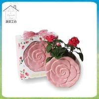 Secret Garden Secret Garden Small Plant - Pink