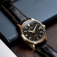 (citizen)CITIZEN Star Eco-Drive Travel World Light Kinetic Watch (BX1008-12E)