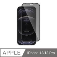 JTLEGEND iPhone 12 / 12 Pro_9H 防窺玻璃保護貼