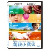 Kiss baby DVD