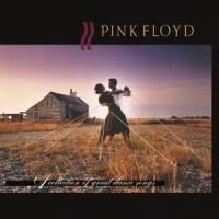 Pink Floyd / dance music legend election [Vinyl LP]