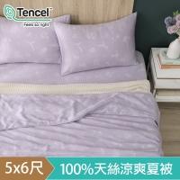 (hoyacasa)HOYACASA Summer Night Dream Talk Tencel Cool and Gentle Summer Quilt (5x6 feet)