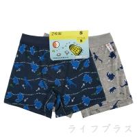 (一品川流)Dinosaur All Printed Boy's Flat Pants-3476-2