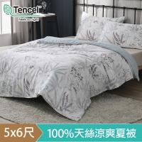(hoyacasa)HOYACASA Mu Xia Xia silk cool and soft summer quilt (5x6 feet)