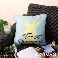 (tromso)TROMSO Fashion Nordic Pillow-U242 New York Le Milu