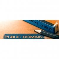 GB VPS FX1 (Malaysia) - Virtual Private Server / Remote Desktop Protocol (RDP)