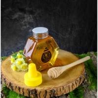 MELIPOLY 280gm Stingless Bee/Kelulut Honey/ 100% Pure Honey