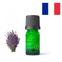 Lavender Essential Oil 薰衣草纯精油 10ml