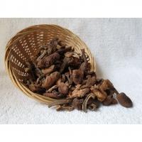 🍄🍄 WILD HAZEL MUSHROOM 野生榛蘑 【无硫】 80G
