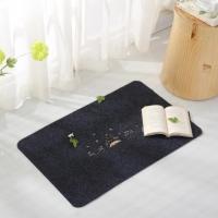 Totoro cute mat / rug