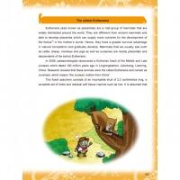 Plants vs Zombies ● Dinosaur Comic: The Heart of the Dinosaur Island