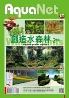 創造水森林2