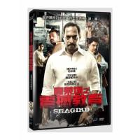 寶萊塢之震撼教育 DVD