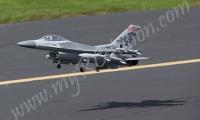 F-16 Fighting Falcon (ARF)