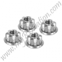 SP Scale Nut Type 2[SI] #ER.3924-2SI
