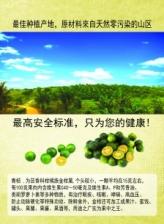 O-Limau Minuman Limau Kasturi (500gm/botol)