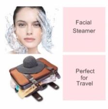 2 in 1 Multi-Function Portable Mini Handheld Facial & Garment Steamer (White)