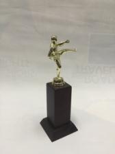 Customizable Trophy 1