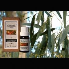 Eucalyptus 10ml - Pure Essential Oil (Therapeutic Grade)
