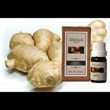 Ginger Oil 10ml - Pure Essential Oil (Therapeutic Grade)