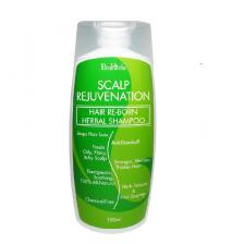 EcoHerbs Scalp Rejuvenation Hair Re-Born Herbal Shampoo for Hair Loss/Hair Thinning, Oily/Itchy/Dry/Flaky Scalp – 150ml